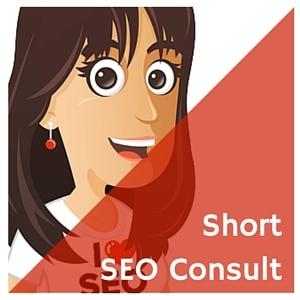 Short SEO consult