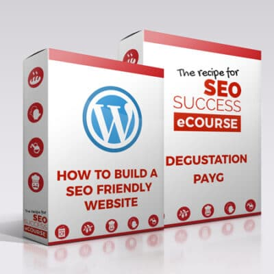 SEO course with wordpress